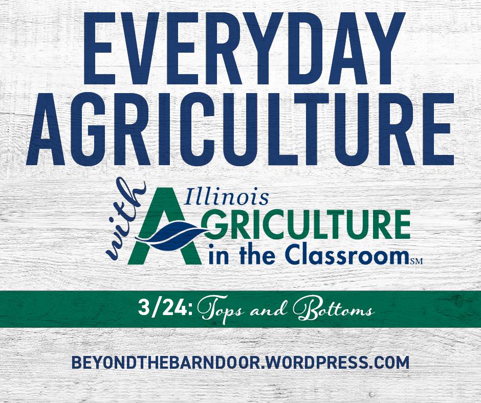 AITC_Everyday_Agriculture_324